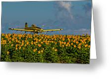 Sunflowers And Crop Duster Greeting Card