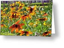 Sunflowers And Friends Greeting Card