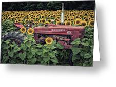 Sunflowers And Tractor Greeting Card