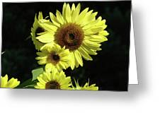 Sunflowers Art Yellow Sun Flowers Giclee Prints Baslee Troutman  Greeting Card