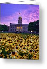 Sunflowers At The Old Capitol Greeting Card