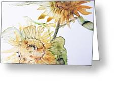 Sunflowers II Uncropped Greeting Card by Monique Faella
