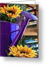 Complementary Sunflowers Greeting Card