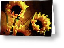 Sunflowers In Shadow Greeting Card