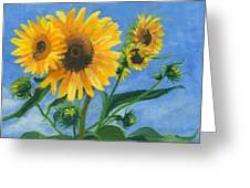 Sunflowers On Bauer Farm Greeting Card