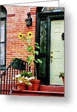 Sunflowers On Stoop Greeting Card