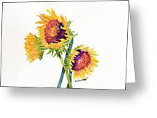 Sunflowers On White Greeting Card