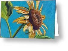 Sunflower's Shine Greeting Card