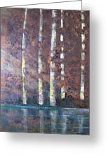 Sunlight And Birch Greeting Card