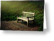 Sunlight On Park Bench Greeting Card