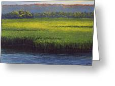 Sunlight On The Marsh Greeting Card
