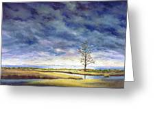 Sunlight On The Marshes 18x24 Greeting Card