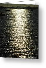 Sunlight On The Water Greeting Card