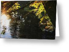 Sunlight Reflections Greeting Card