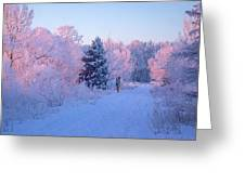 Sunlight Through The Frost Greeting Card