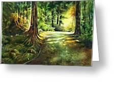 Sunlight Trial Port Moody Greeting Card