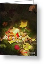 Sunlit Autumn Leaves On Dark Moss Ap Greeting Card