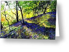 Sunlit Bluebell Wood Greeting Card