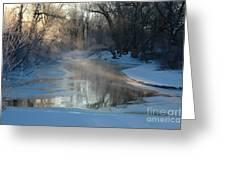 Sunlit Creek  Greeting Card