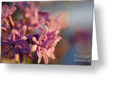 Sunlit Dream Greeting Card
