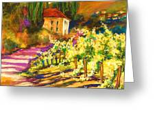 Sunlit Grapevines  Sold Greeting Card