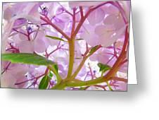 Sunlit Hydrangea Flowers Garden Art Prints Baslee Troutman Greeting Card