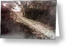 Sunlit Pathway Greeting Card