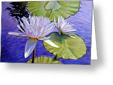 Sunlit Petals Greeting Card
