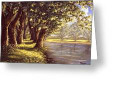 Sunlit Riverbank Greeting Card