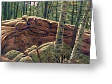 Sunlit Rocks Greeting Card