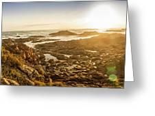 Sunlit Seaside Greeting Card