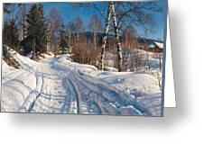 Sunlit Winter Landscape Greeting Card