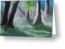 Sunlit Woods Greeting Card