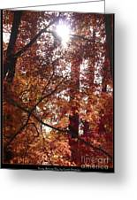 Sunny Autumn Day Poster Greeting Card