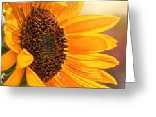 Sunny Beauty Greeting Card