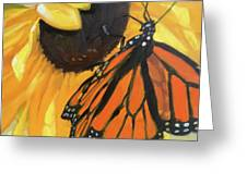 Sunny Butterfly Greeting Card