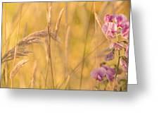 Sunny Garden 2 Greeting Card