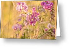Sunny Garden 3 Greeting Card