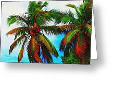 Sunny Palms Greeting Card