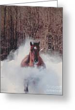Sunny Running For The Barn. Greeting Card