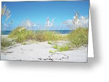 Sunny Sanibel Greeting Card