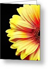 Sunny Side Over Easy Greeting Card