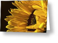 Sunny Too By Mike-hope Greeting Card