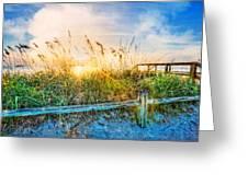 Sunrays On The Beach Greeting Card