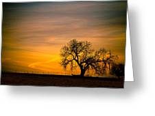 Sunrise 1-27-2011 Greeting Card