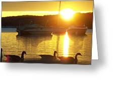 Sunrise 10 5 2009 007a Greeting Card