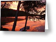 Sunrise And Birch Trees Greeting Card