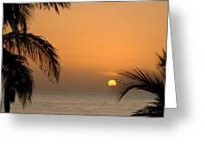 Sunrise And Palms Greeting Card