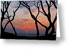 Sunrise At Fort Fisher Greeting Card