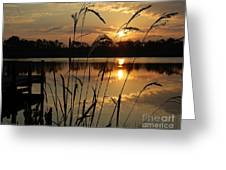 Sunrise At Grayton Beach Greeting Card